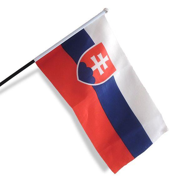 Vlajka Slovensko 20x30 cm